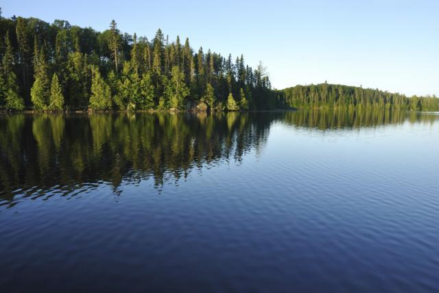 The River Vista